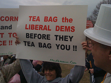 TeaBaggers Picked The Name!!! (3/3)